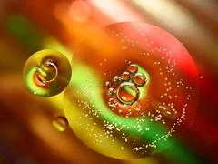 svet bublín