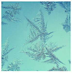 kresby pani zimy