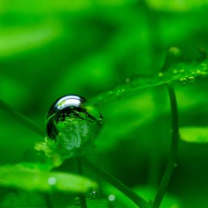 Odraz v bublinke