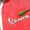 kobylka Vespa