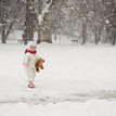 Nasnežilo :)