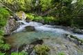 pestrofarebny potok