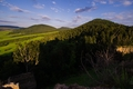 hory hôrky