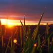 ... jarný východ slnka ...