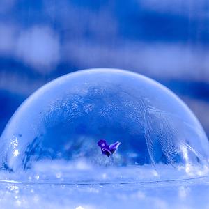 ... v ľadovom kráľovstve