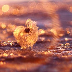 ... v zajatí slnka a ľadu