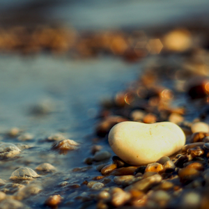 ... srdce v slzách Dunaja