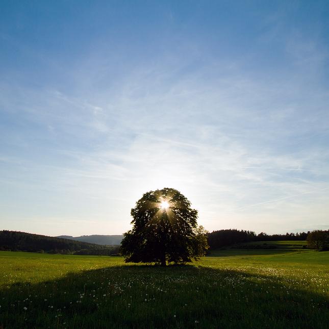Slunce, hvězda nebo Bůh ?