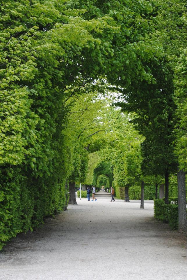 Záhrada pri Schönbrunne