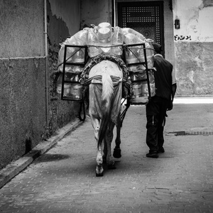 V uličkách Fezu