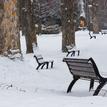 Zimný park