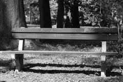 Opustená lavička