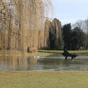 Holandsky park