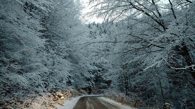 Zima cestou na Martinske hole