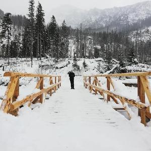 cestou na Zamkovskeho chatu