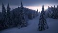 Ticho v Mrazivej Krajine