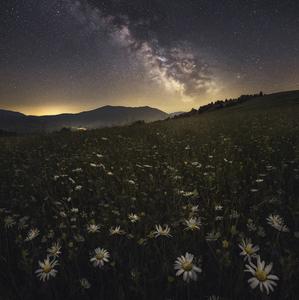 Nocna zahrada