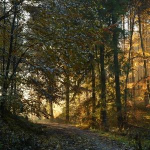 Jeseň na Flochovej