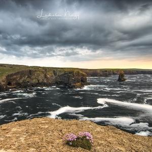 Loop Head, Irsko