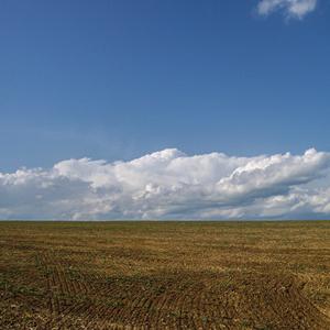 Rovina