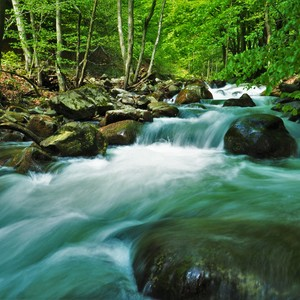 pod Šútovským vodopádom