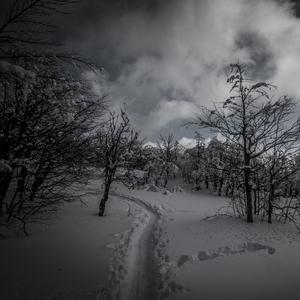 Cestou na Vtáčnik