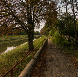 Cestou popri rieke