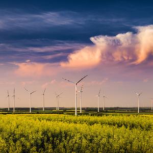 .windmills