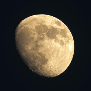 moon II (statív)