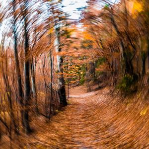 Jesenné šialenstvo