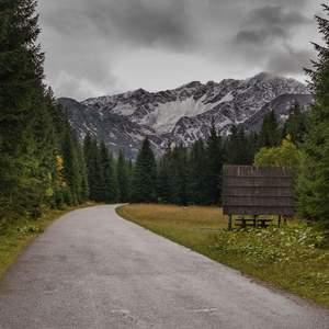 Cestičkou k horám