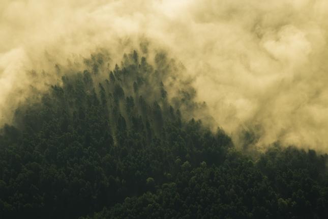 ranne hmly