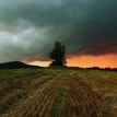 svetlo pred búrkou