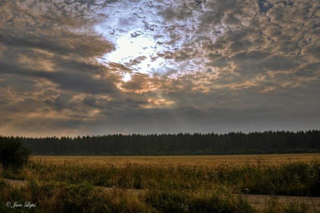 Diera v oblohe .