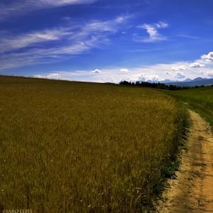 cesta k Tatrám