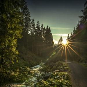 ráno v Látanej doline