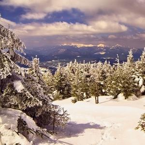 jarná óda na zimu
