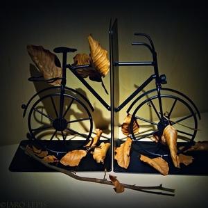 Bicykel ...