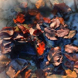 jesenné návraty