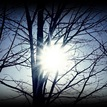 slnko v sieti