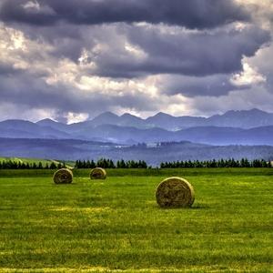 poľno Tatranská  farebná