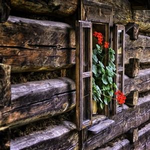 okná starých mám