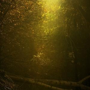keď svetlo vniká do tmy