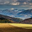 krajinka po zime