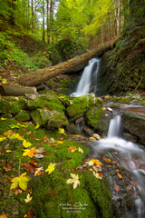 -jesenné pohľady-