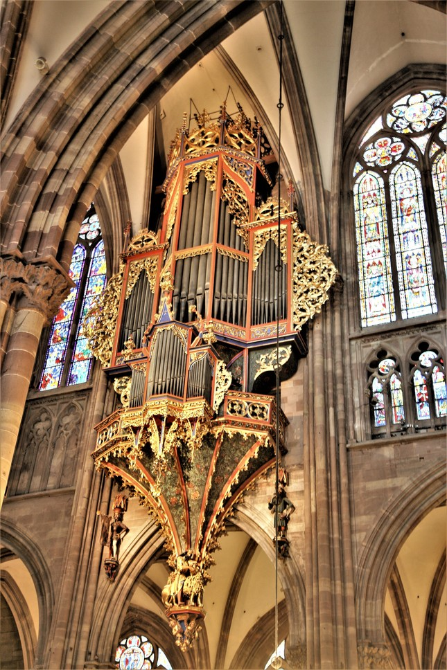 Katedrala - organ