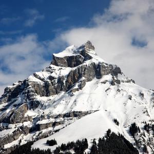 Swiss Panorama 6