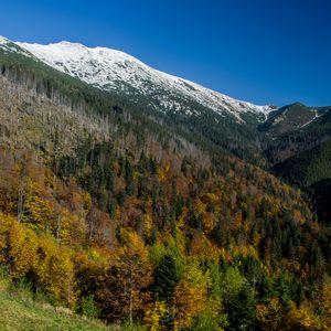 Jeseň v Nízkych Tatrách