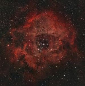 Vesmírna ruža