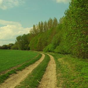 Cesta I.